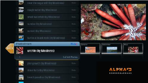 Screenshot of alpha media player, Flickr User selected, Set selected resulting in a vertical list on the left side of the screen of all the photos in the set